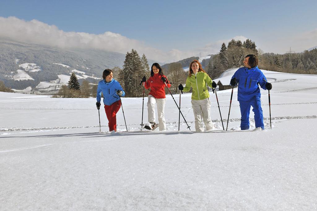 ... in Flachau, Salzburger Land, Ski amadé - Ferienwohnung im Haus Maier