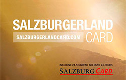 Salzburger Land Card - Haus Maier - Ferienwohnung in Flachau